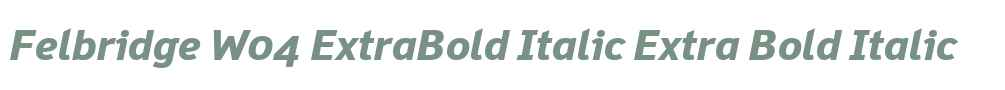 Felbridge W04 ExtraBold Italic