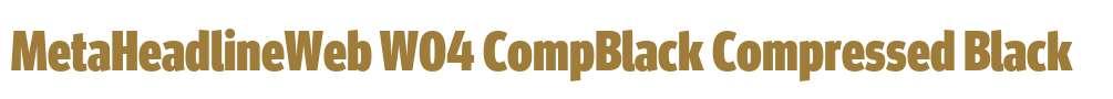 MetaHeadlineWeb W04 CompBlack