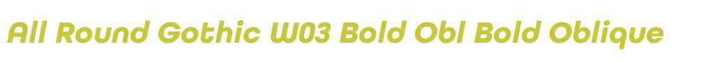 All Round Gothic W03 Bold Obl