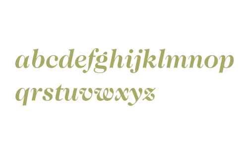 ITC Caslon 224 Std Bold Italic