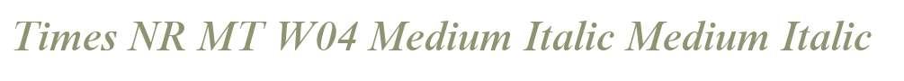 Times NR MT W04 Medium Italic