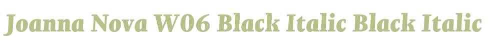 Joanna Nova W06 Black Italic