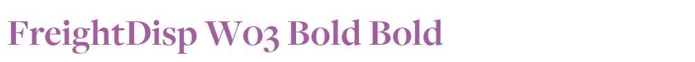 FreightDisp W03 Bold