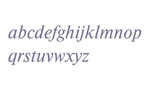 Times New Roman* MONOTYPE Medium Italic