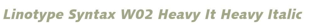 Linotype Syntax W02 Heavy It