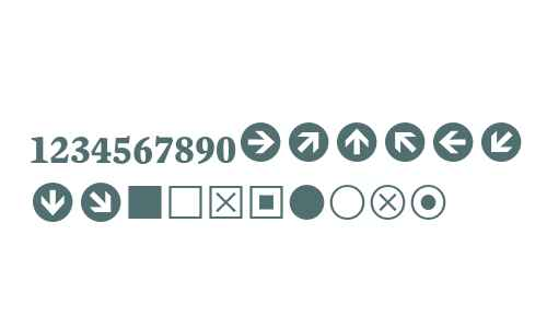 Mercury Numeric G1 Bold