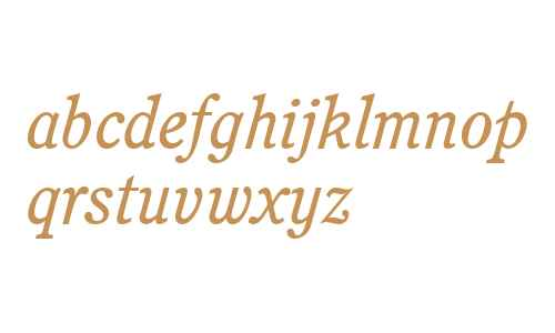 Perspective SSi Italic