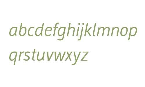 Argumentum W01 Light Italic