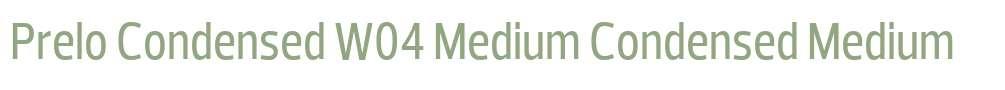 Prelo Condensed W04 Medium