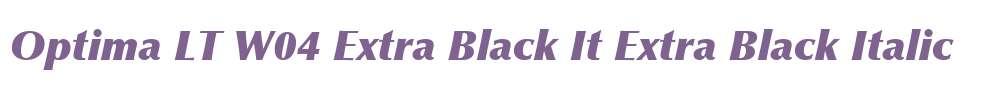 Optima LT W04 Extra Black It