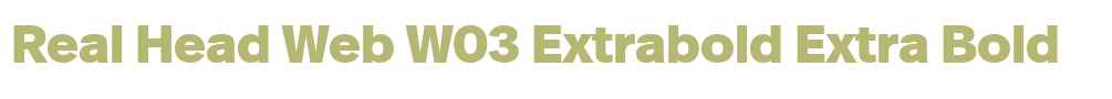 Real Head Web W03 Extrabold