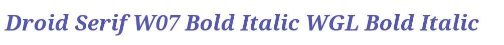 Droid Serif W07 Bold Italic