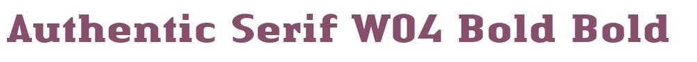 Authentic Serif W04 Bold