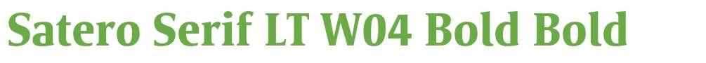 Satero Serif LT W04 Bold