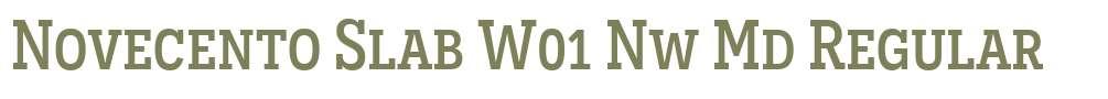 Novecento Slab W01 Nw Md