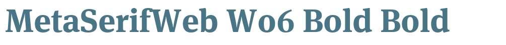 MetaSerifWeb W06 Bold