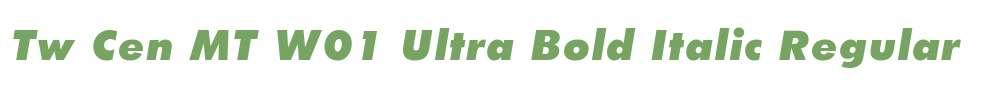 Tw Cen MT W01 Ultra Bold Italic