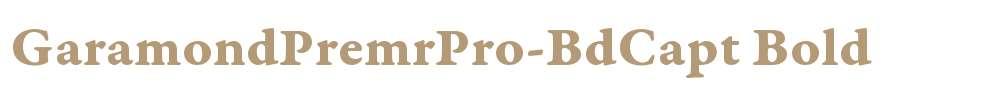 GaramondPremrPro-BdCapt