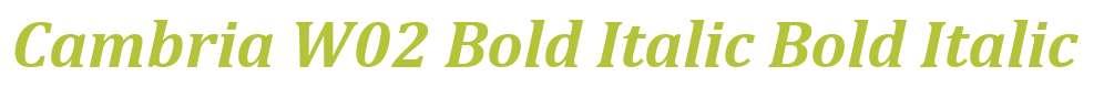 Cambria W02 Bold Italic