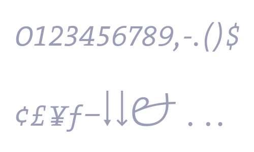 TheSerif ExtraLight Expert Italic