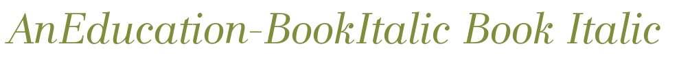 AnEducation-BookItalic