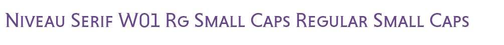 Niveau Serif W01 Rg Small Caps