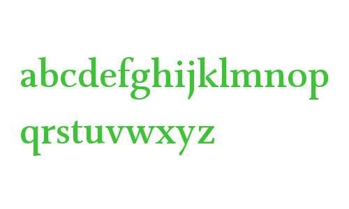 Combi Serif W01 Medium