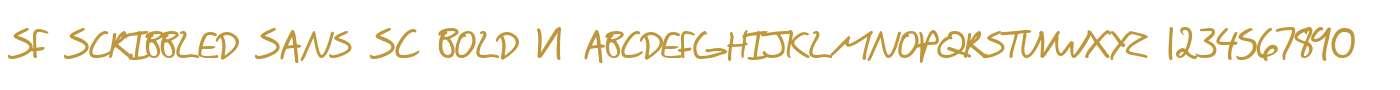 SF Scribbled Sans SC Bold V1