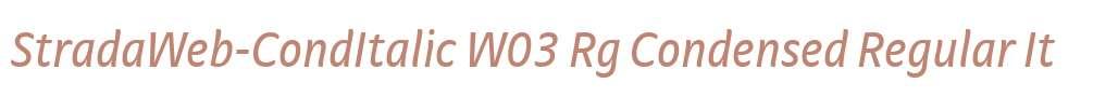 StradaWeb-CondItalic W03 Rg