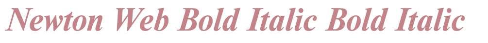 Newton Web Bold Italic