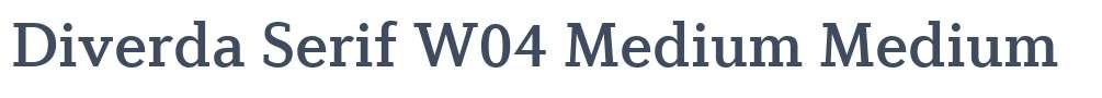 Diverda Serif W04 Medium