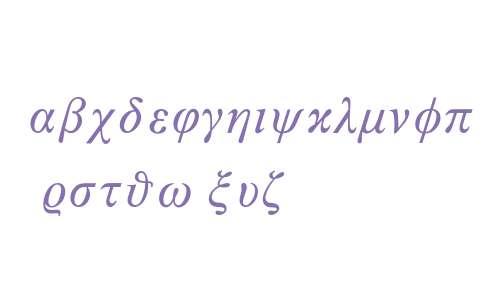 Times New Roman* MONOTYPE Math 3 Italic