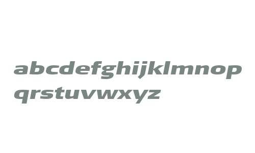 SignaWeb-ExtdBlackItalic W03 Rg