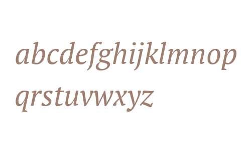 PT Serif Italic V2
