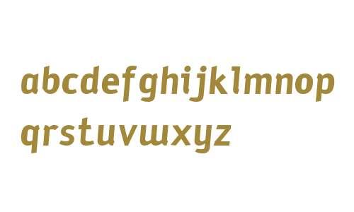 SodiumBold Italic W00 Regular