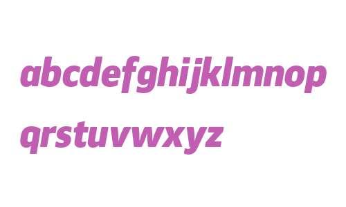 Webnar W00 Black Italic