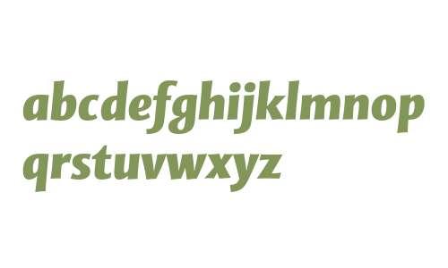 Mentor Sans Std Black Italic