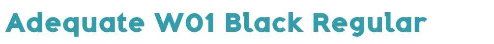 Adequate W01 Black