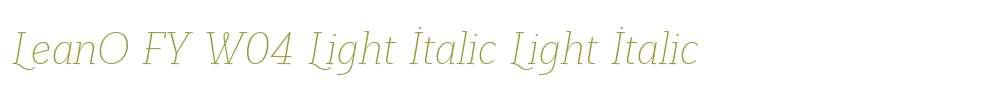 LeanO FY W04 Light Italic