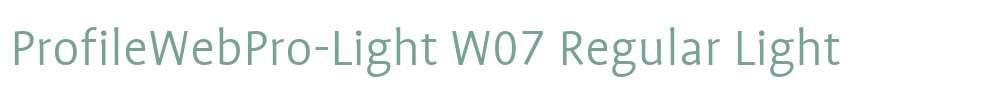 ProfileWebPro-Light W07 Regular