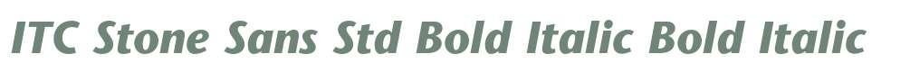 ITC Stone Sans Std Bold Italic