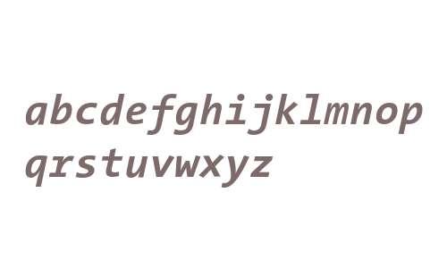 TheSansMono Bold Italic