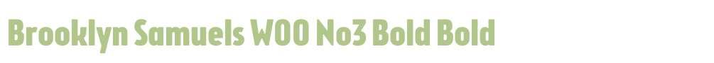 Brooklyn Samuels W00 No3 Bold
