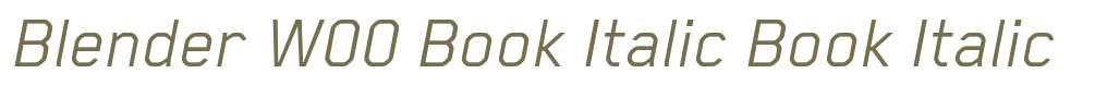 Blender W00 Book Italic
