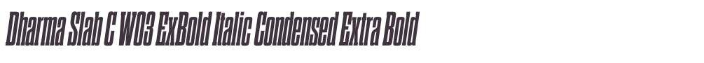 Dharma Slab C W03 ExBold Italic