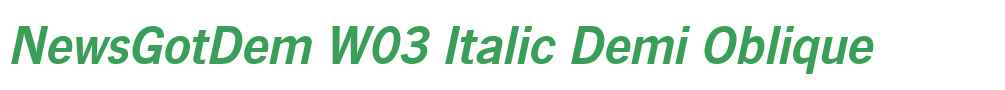 NewsGotDem W03 Italic