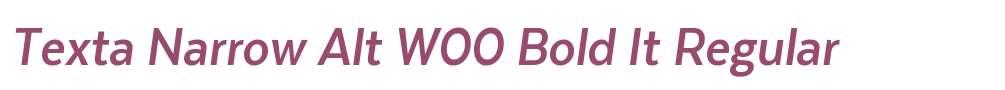 Texta Narrow Alt W00 Bold It