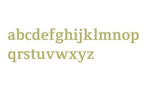 Foundry Form Serif W04 Bd