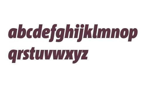 Corpid Cd Black Italic