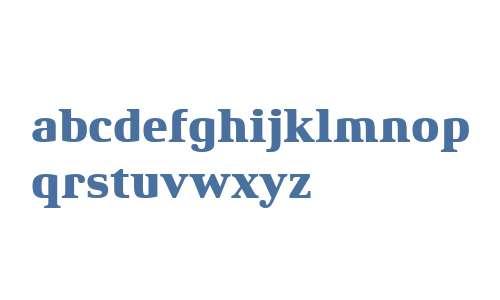 Xenois Serif W04 Heavy